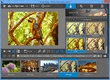 InPixio Free Photo Editor - Screenshot 01